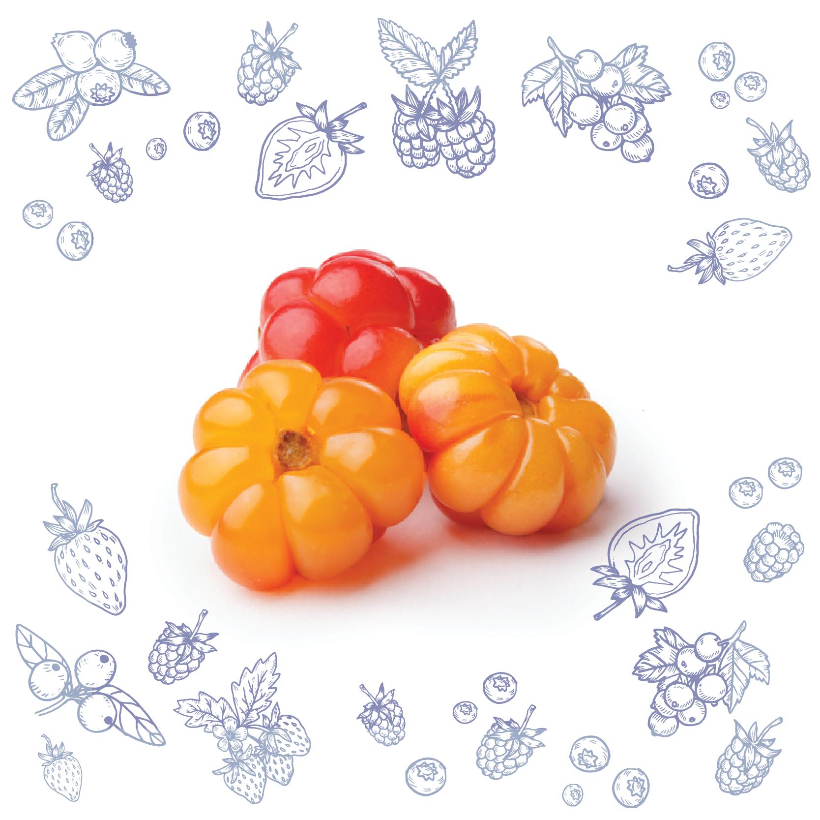 Polarica-Berries-lakka