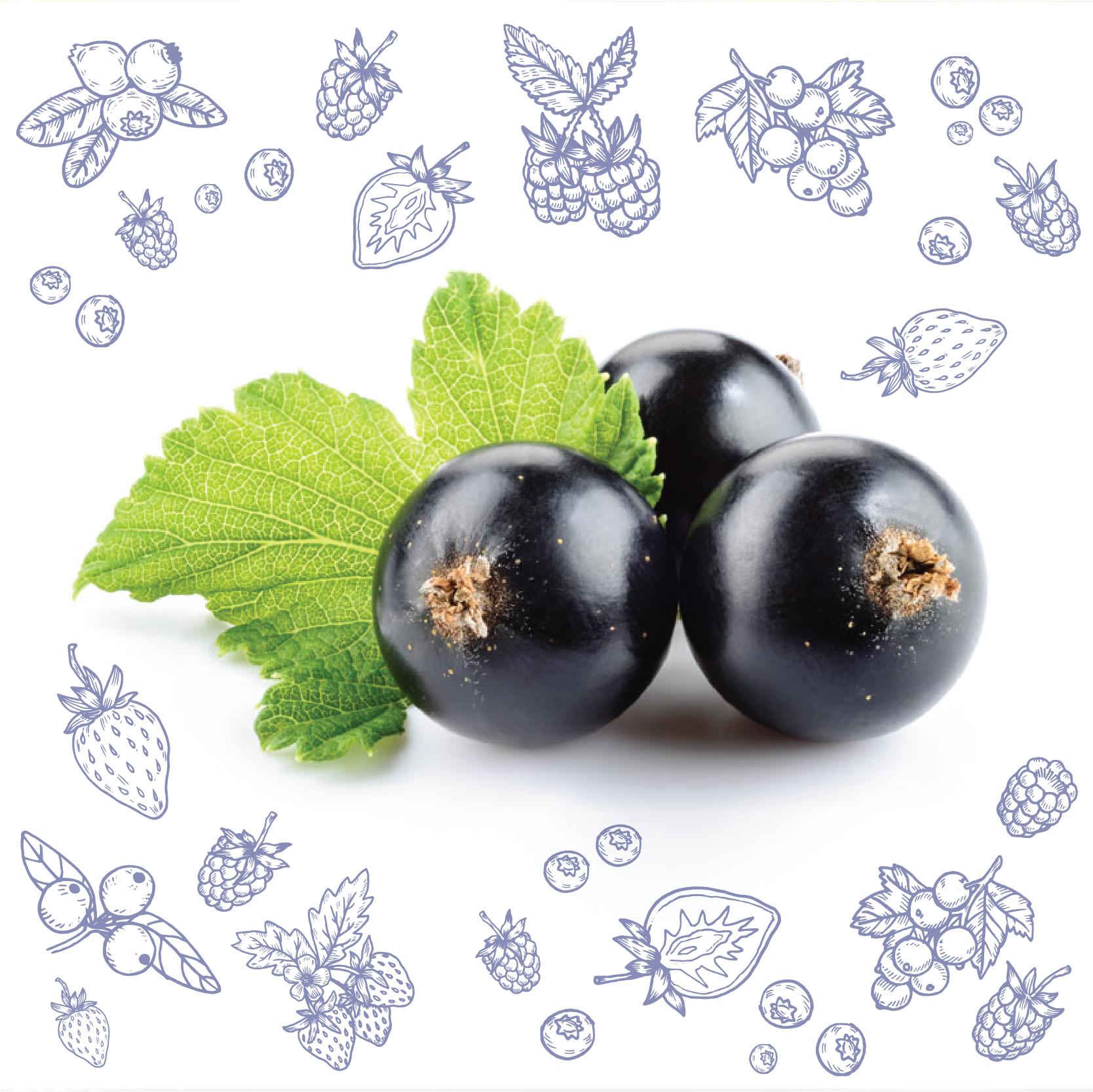 Polarica-Berries-blackcurrant