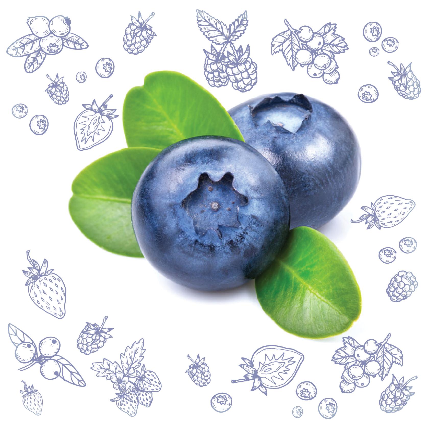Polarica-Berries-bilberry