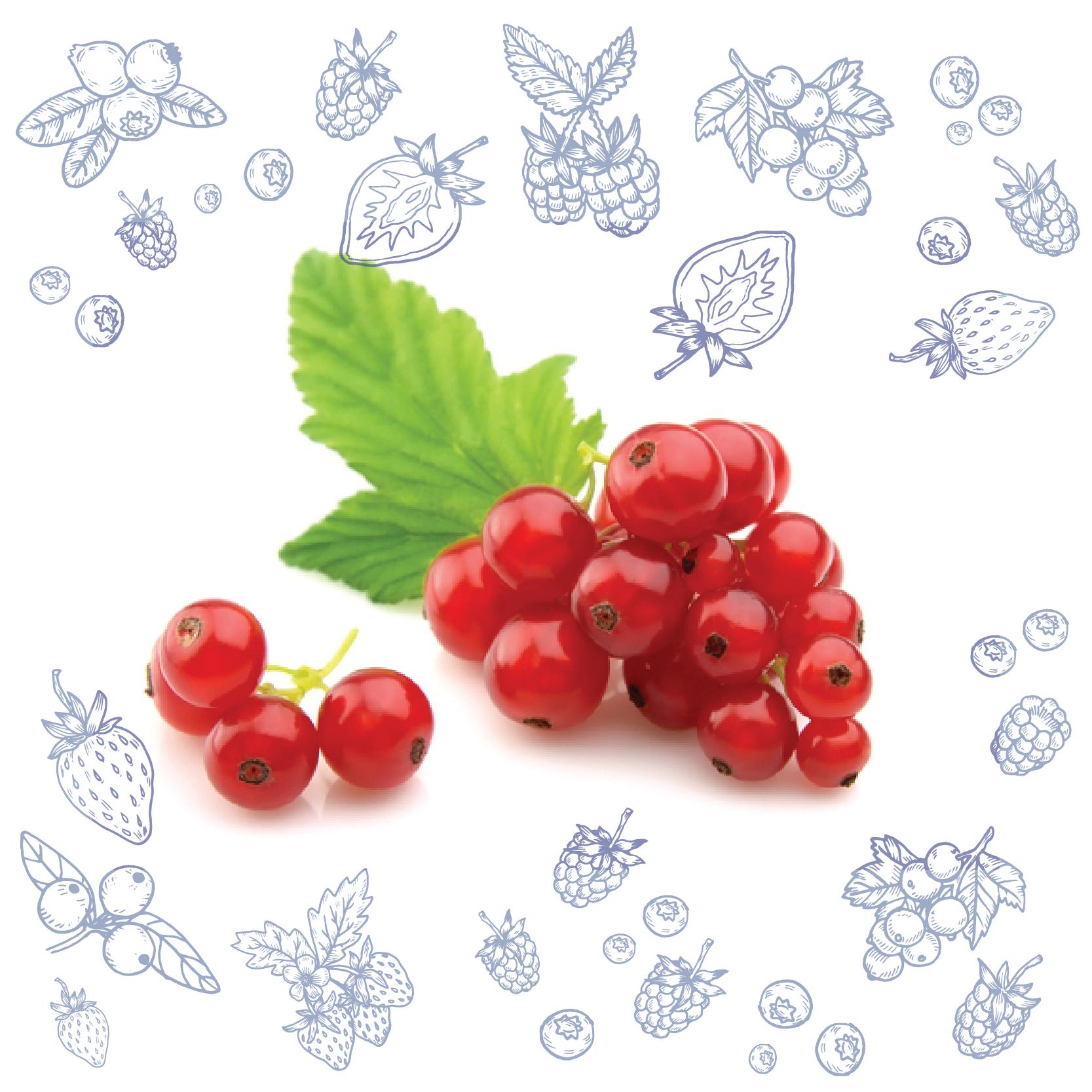 Polarica-Berries-punaherukka