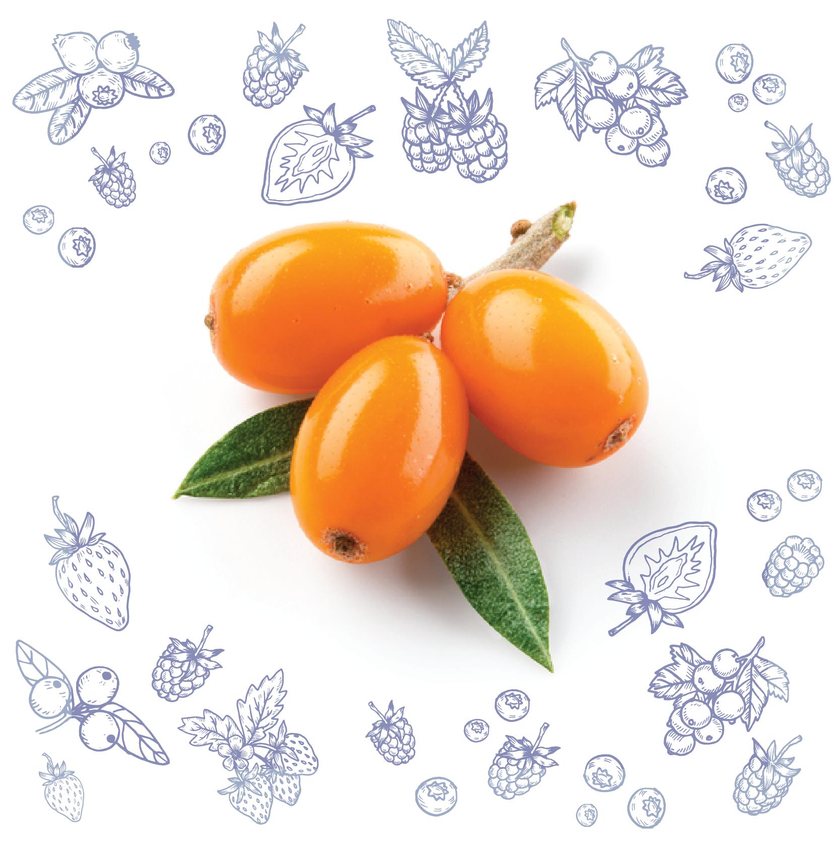 Polarica-Berries-tyrni