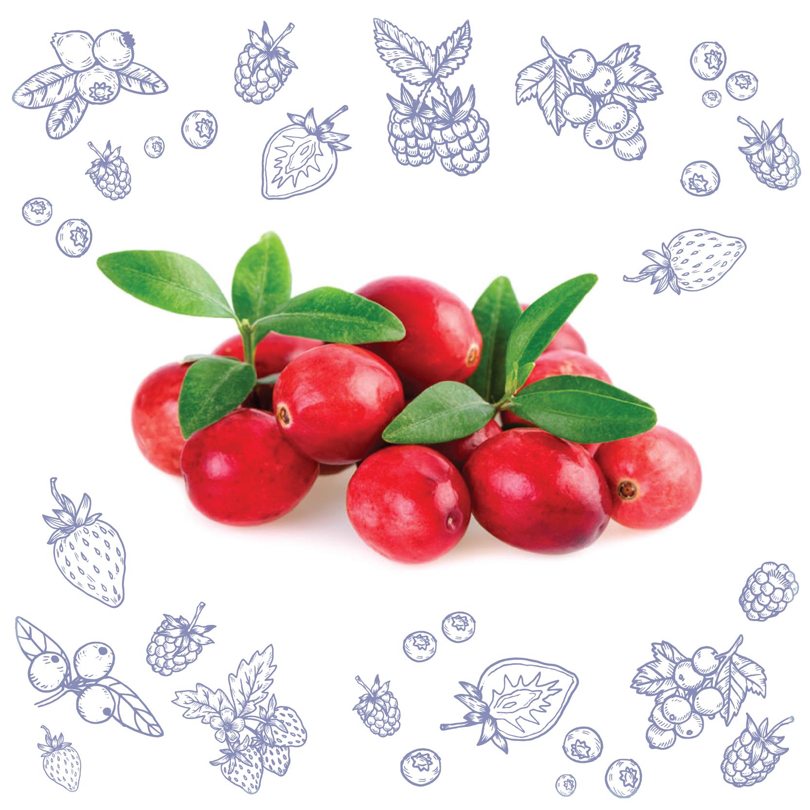Polarica-Berries-ktranbar