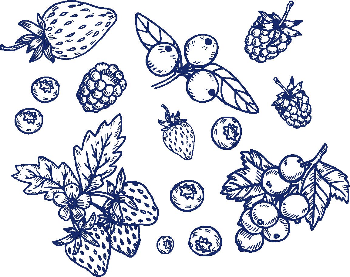 Ekologiska blåbär & hallon